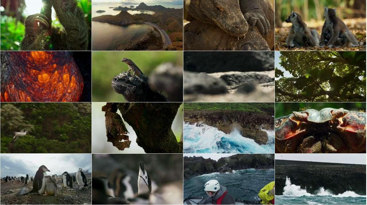 مستند سیاره زمین 2