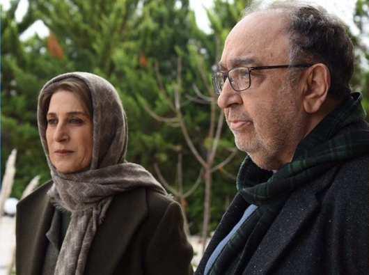 فیلم ایرانی دل دیوانه